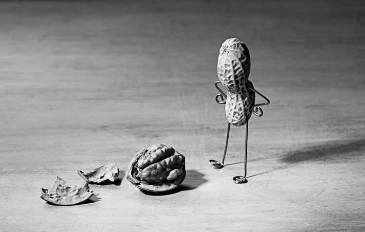 Peanut man and walnut brain