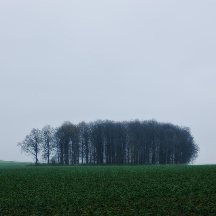 Radek Standera|Minimalistic autumn landscape
