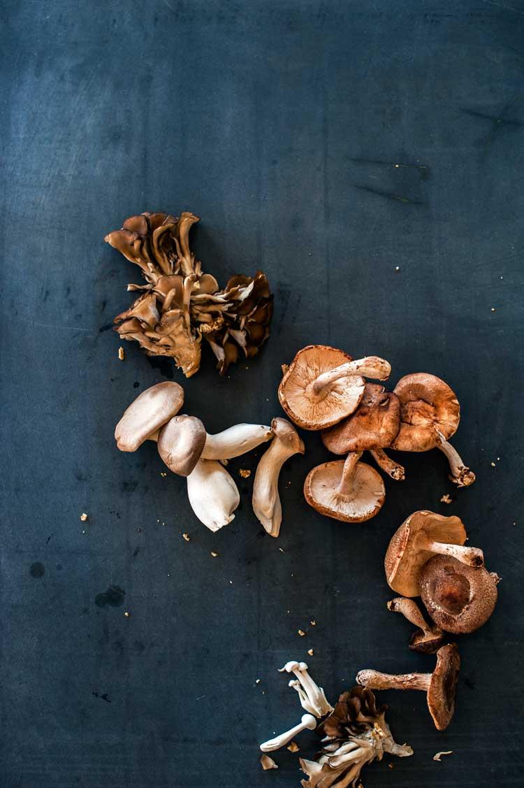 Adrian Mueller | Assortment of wild mushrooms on slate table