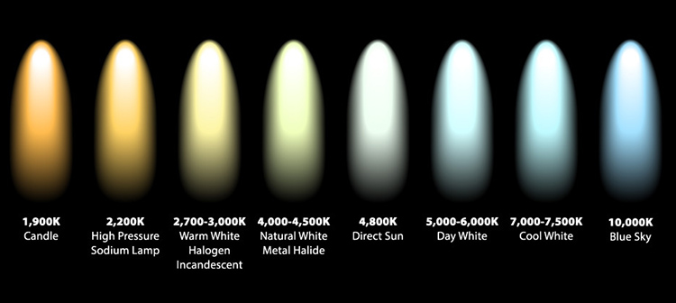 Understanding White Balance And Color Temperature The