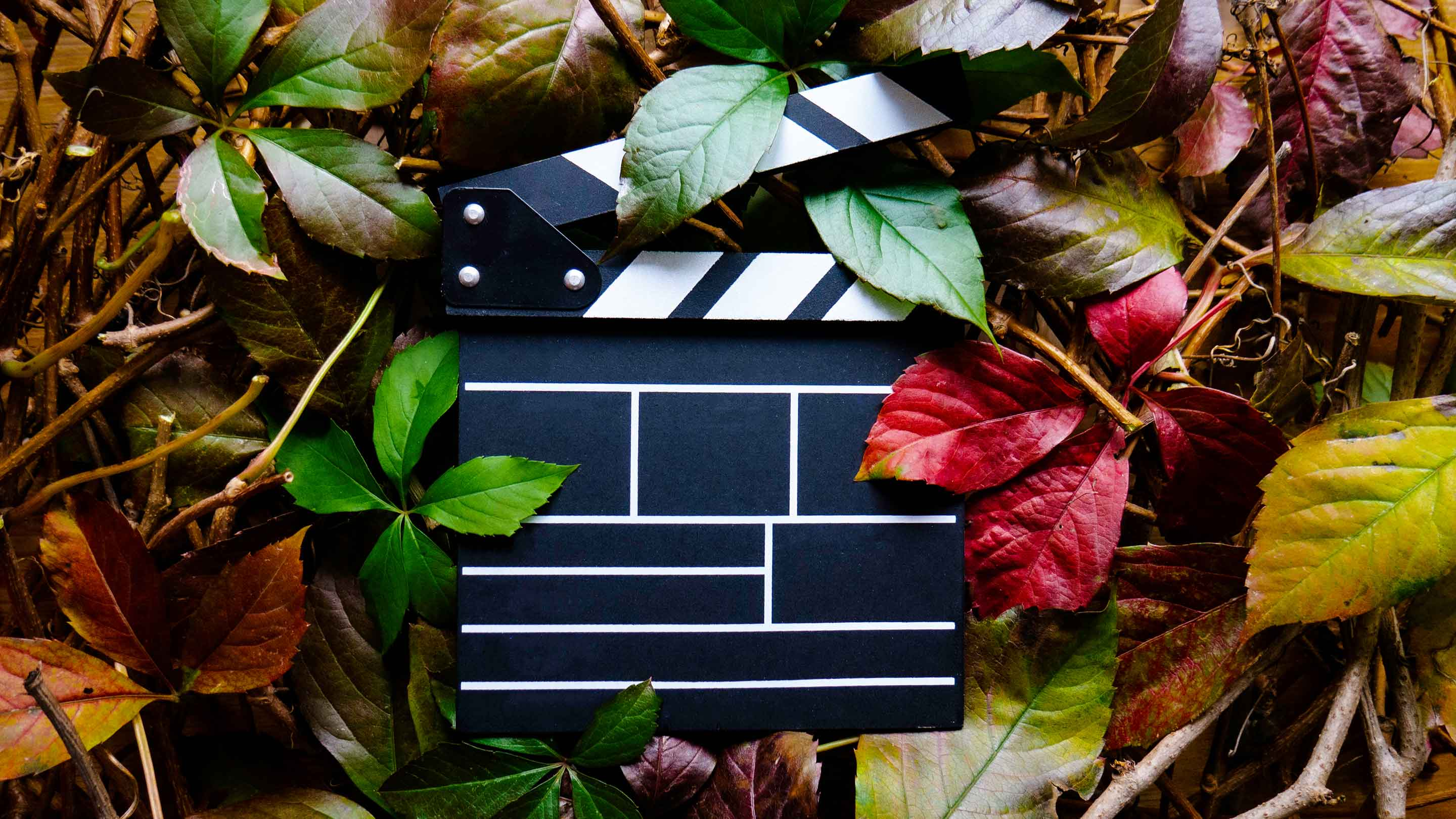 How to Use Final Cut Pro:15 Essential Tutorials -