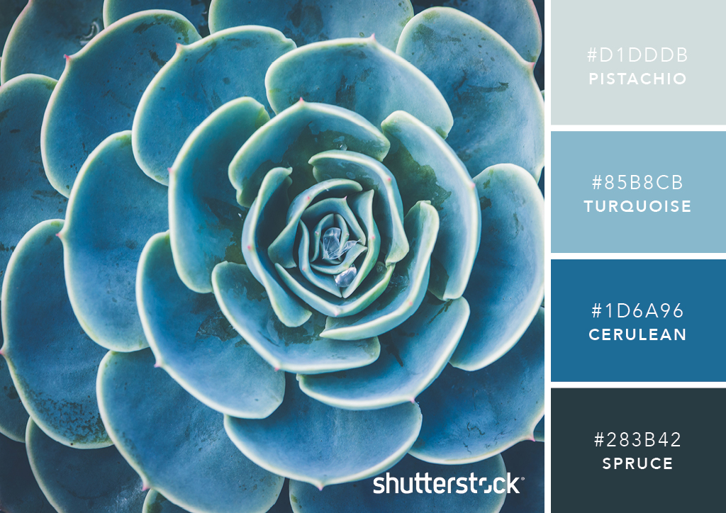 101 Color Combinations to Inspire Your Next Design – Succulent Blue Green Color Palette
