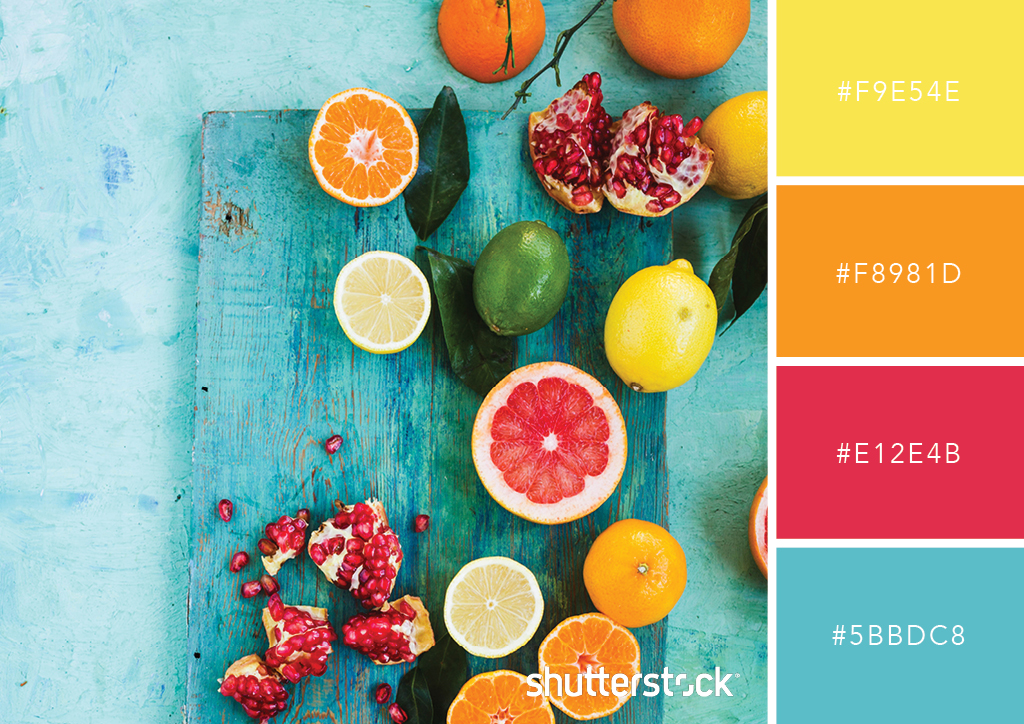 Guide to Color in Design: Color Meaning, Color Theory, and More – Complementary Color Scheme