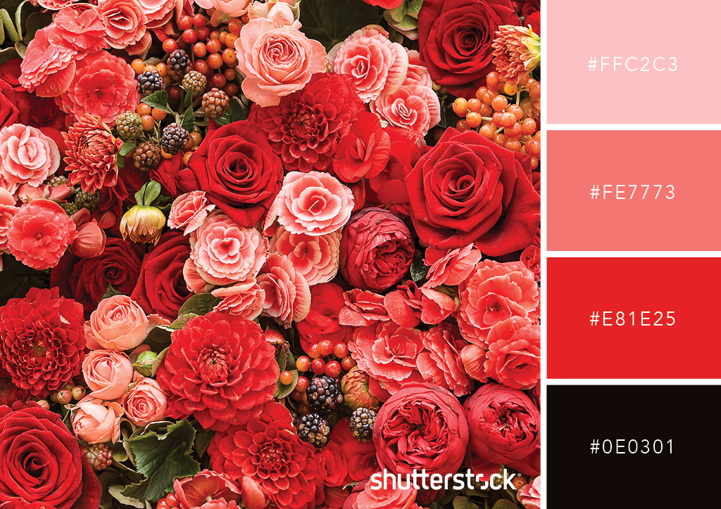 Guide to Color in Design: Color Meaning, Color Theory, and More – Meaning of Red