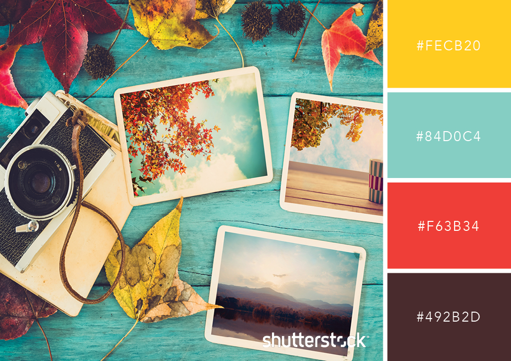 25 Retro And Vintage Color Palettes Free Swatch Download