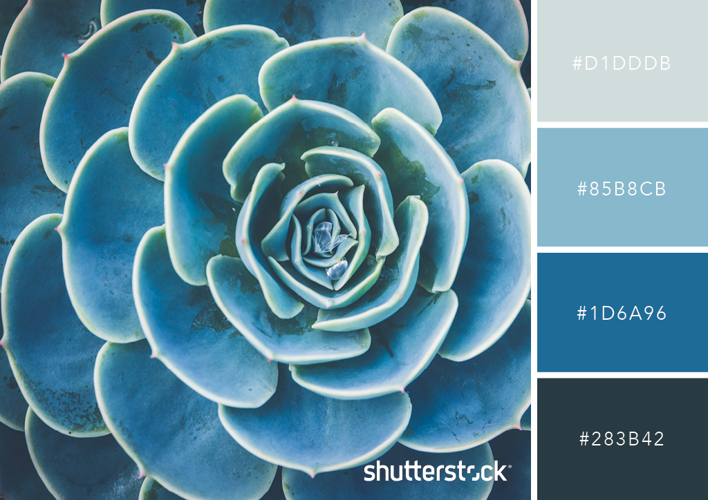 Guide to Color in Design: Color Meaning, Color Theory, and More – Monochromatic Color Palette