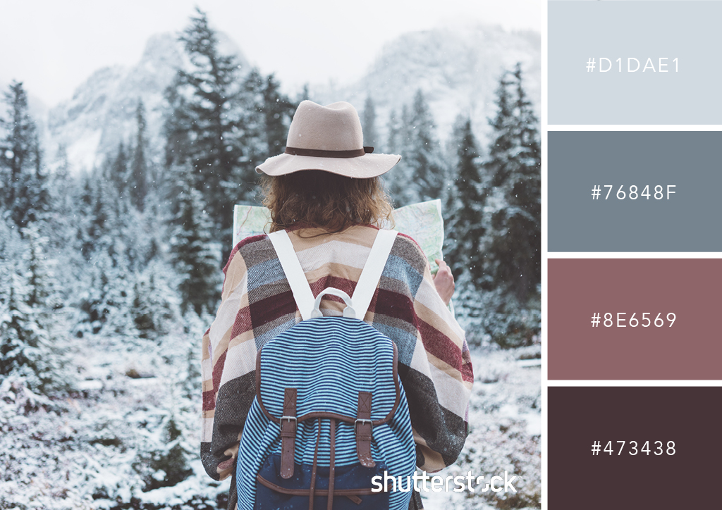 20 Free Seasonal Color Palettes for Your Next Holiday-Themed Project — Winter Wanderlust