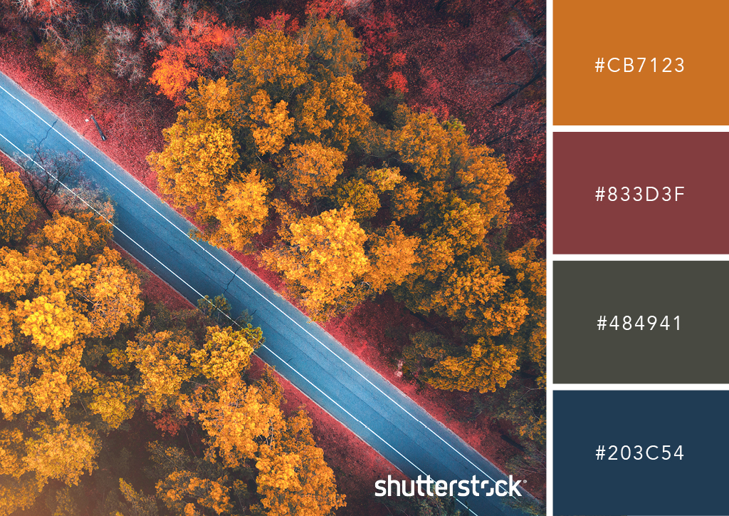 20 Free Seasonal Color Palettes for Your Next Holiday-Themed Project — Rural Roads