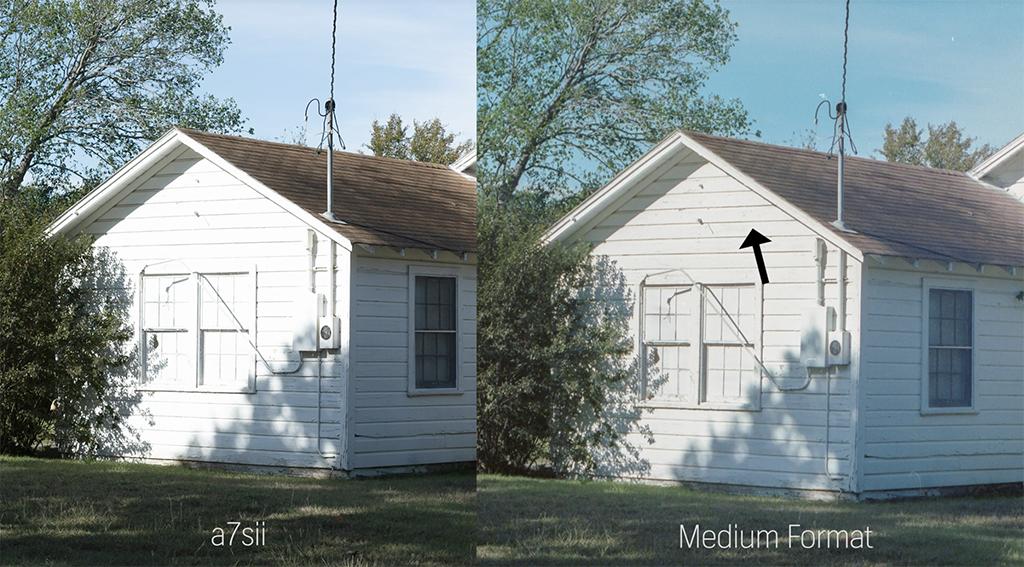 Film vs. Digital: Comparing Medium Format to 35mm to Mirrorless — Highlights