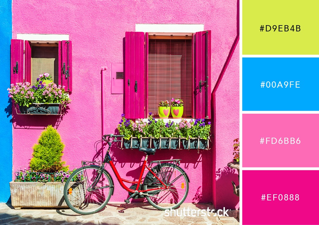 25 Eye-Catching Neon Color Palettes to Wow Your Viewers — Venetian Windows