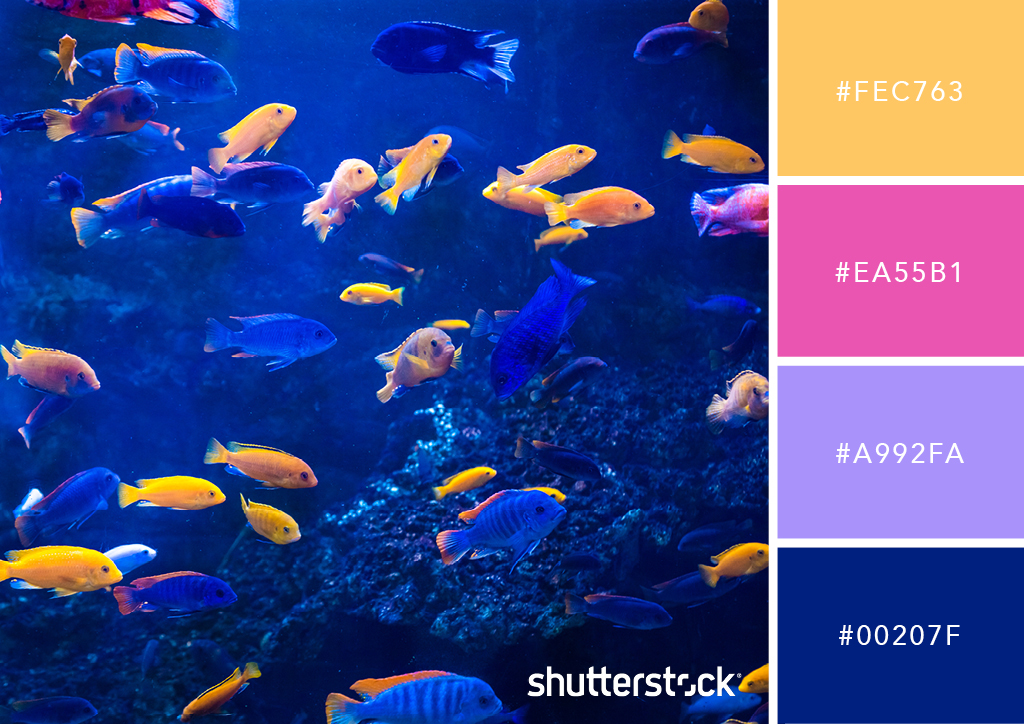 25 Eye-Catching Neon Color Palettes to Wow Your Viewers — Fluorescent Fish