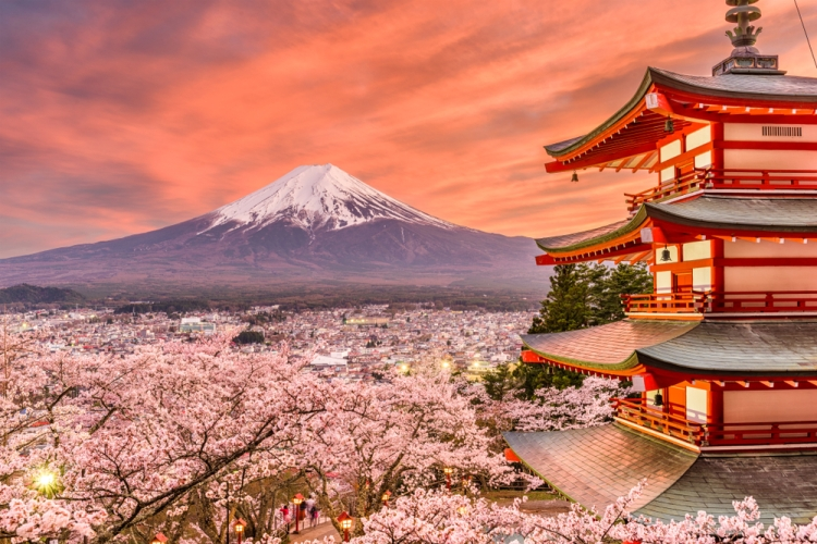 15 Fresh Tips for Photographing Cherry Blossoms — Be Flexible with Travel