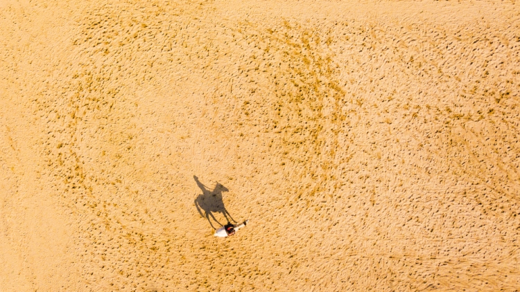 12 Pro Tips on Shooting Sharp Aerial Photographs— Pan the Drone