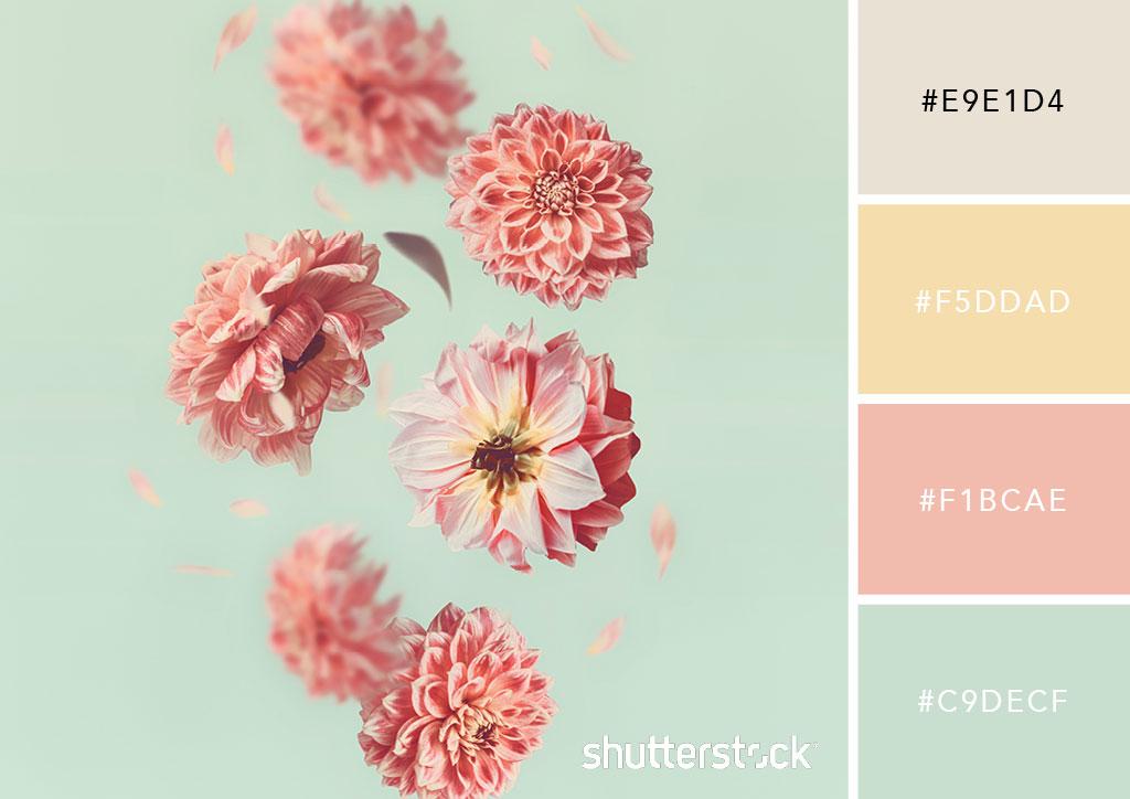 20 Pastel Color Palettes to Get the Rococo Art Look — Fallen Petals