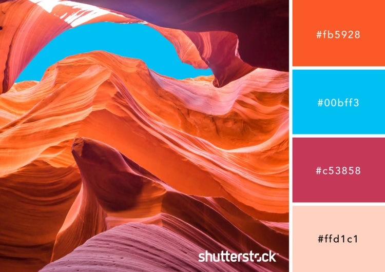 Zest for Life: How to Use The Color Orange in Your Design — Sand and Sky