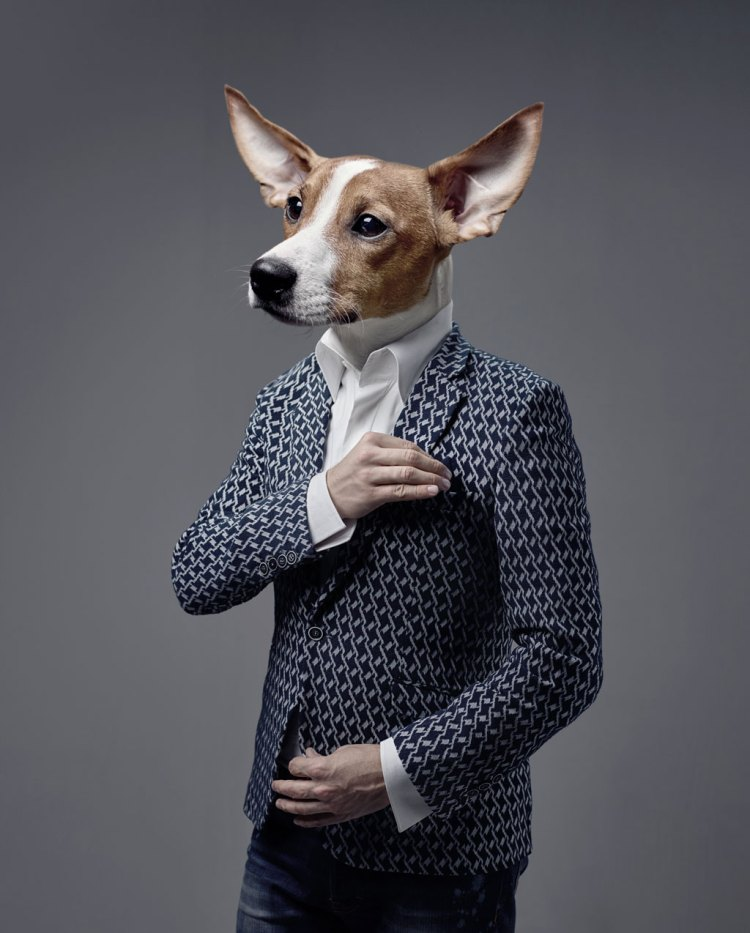 Dogs in Design: 10 Grrreat Canine-Themed Projects — Dapper Portrait