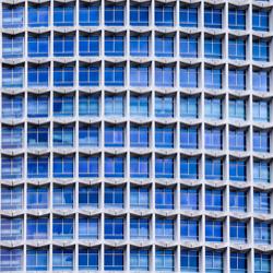 Tendencia de color by Shutterstock 2020