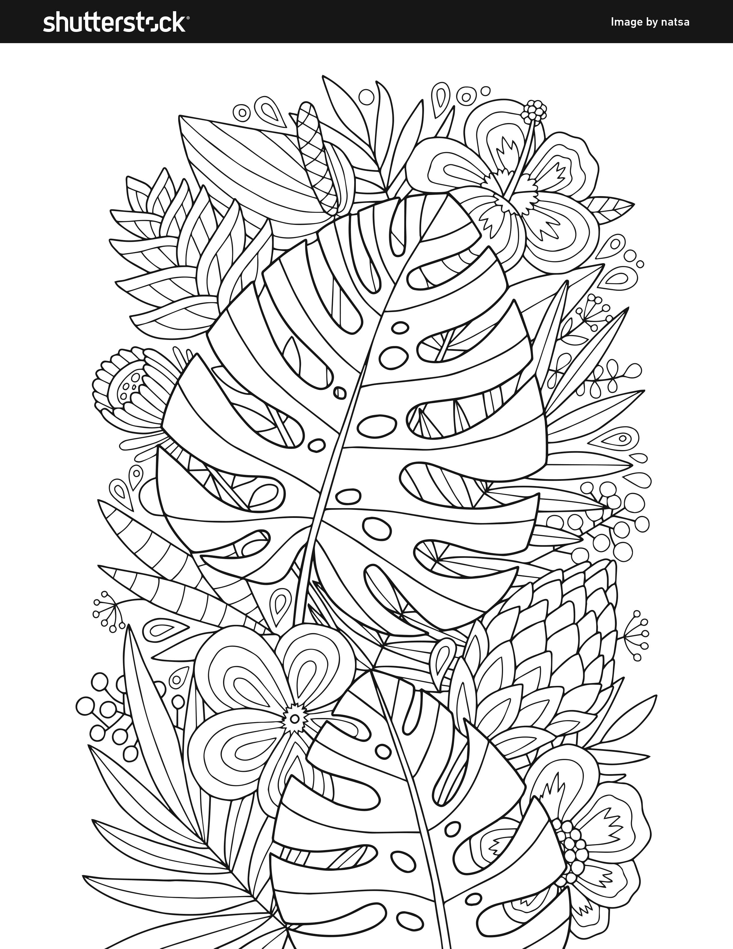 Free Coloring Book – 8 Free And Fun Pages To Print And Color In