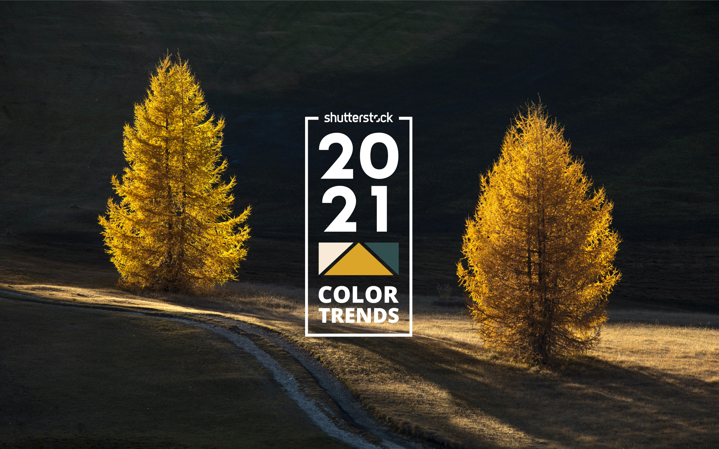2021 Color Trends: The Year's Top Colors – Shutterstock